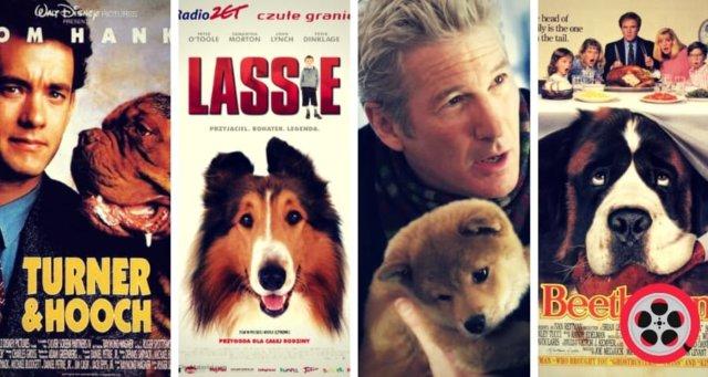 en iyi köpek filmleri