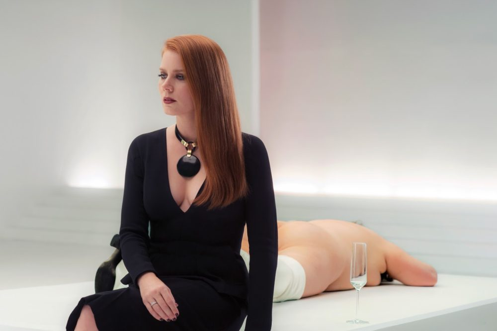 nocturnal animals amy adams susan